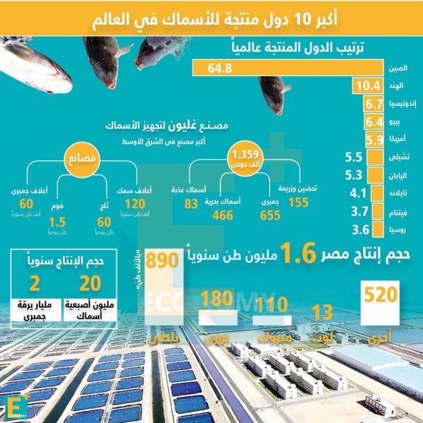 بالأرقام.. أكبر ١٠ دول منتجة للأسماك في العالم