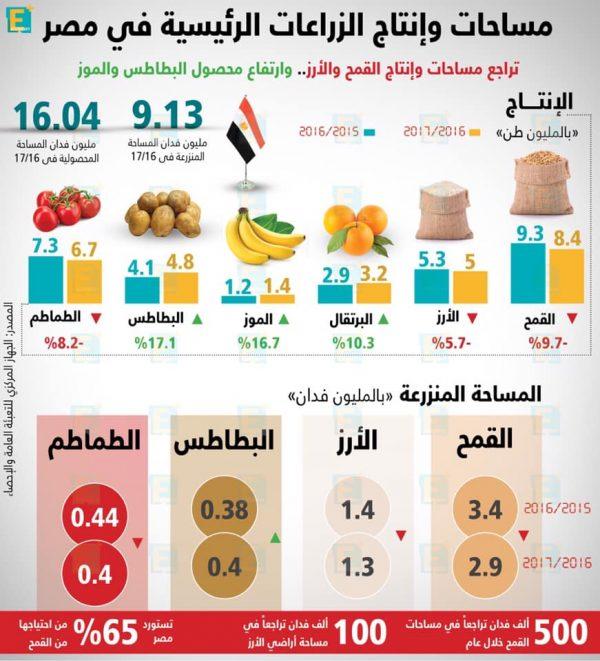 مساحات وإنتاج الزراعات الرئيسية في مصر