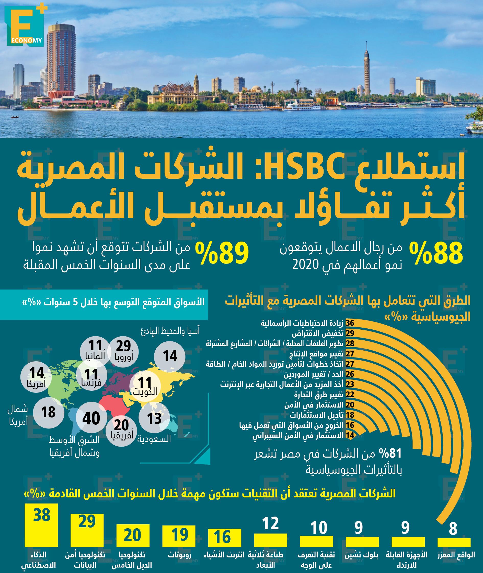 الشركات المصرية