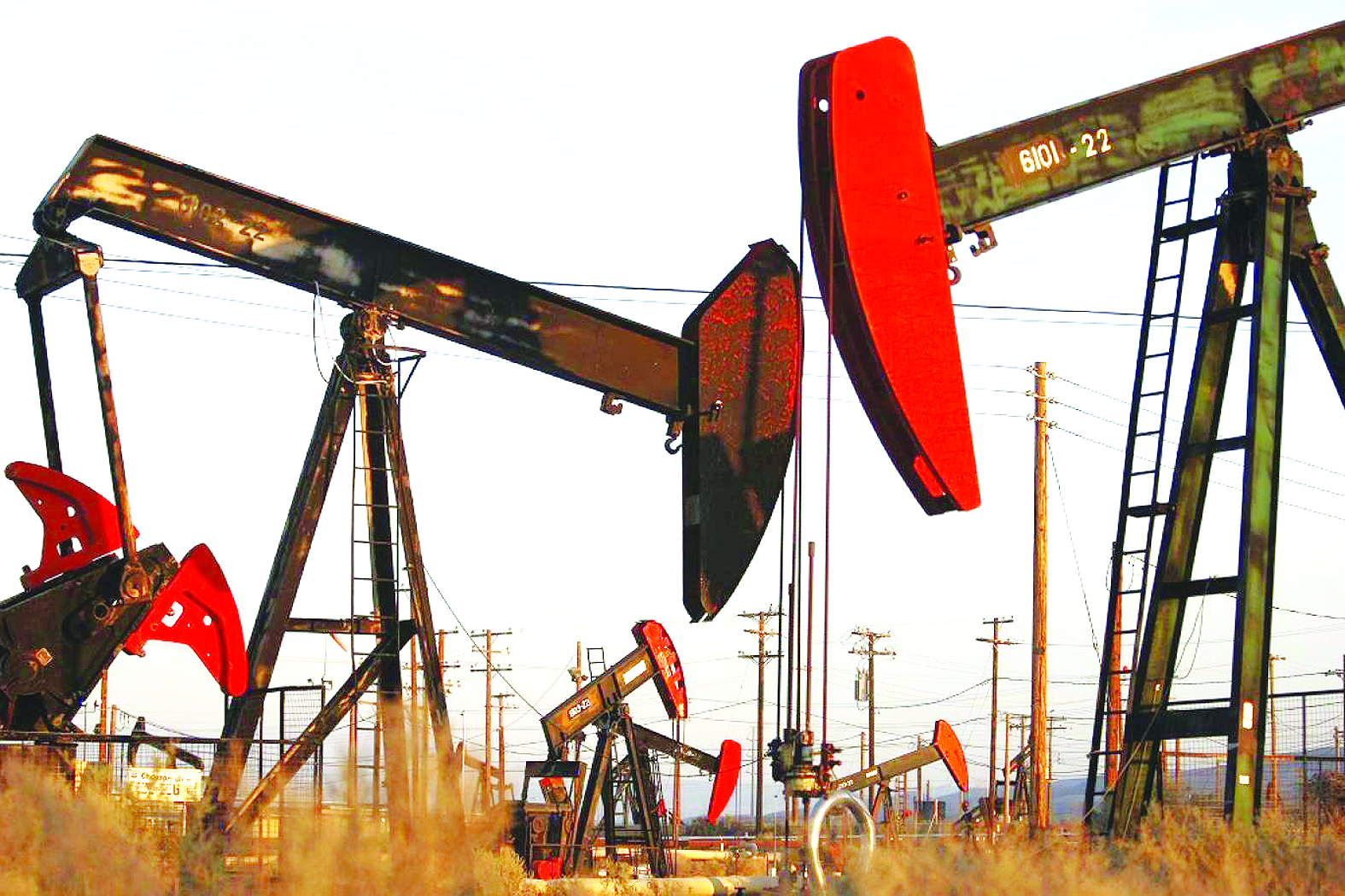 عقود النفط
