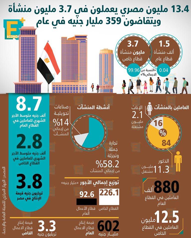 13.4 مليون مصري يعملون في 3.7 مليون منشأة