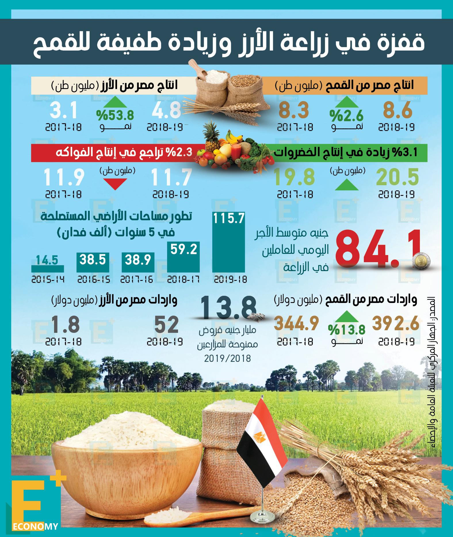قفزة في زراعة الأرز وزيادة طفيفة للقمح